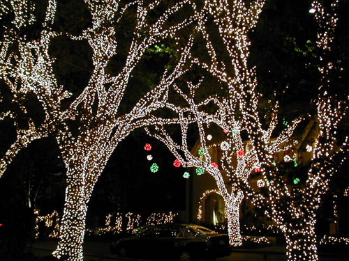 there is no organized route for touring the christmas lights for highland park