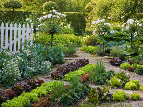 Best 20 Herb Garden Design 2017: Beautiful Vegetable Gardens PLUS Design Tips And Ideas