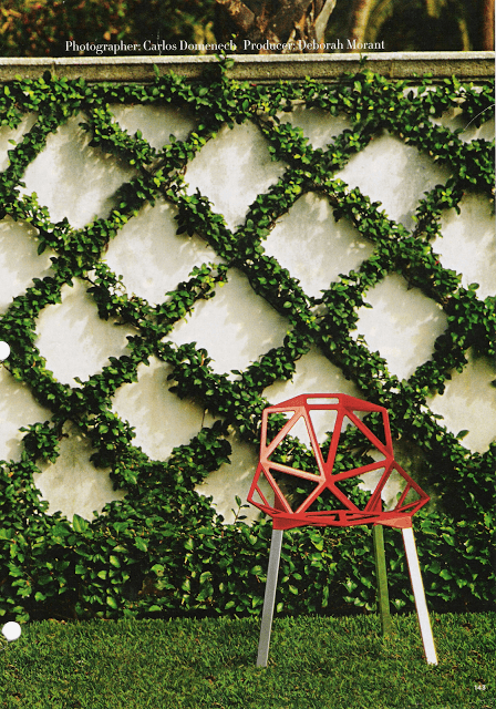 diamond lattice espalier on wall