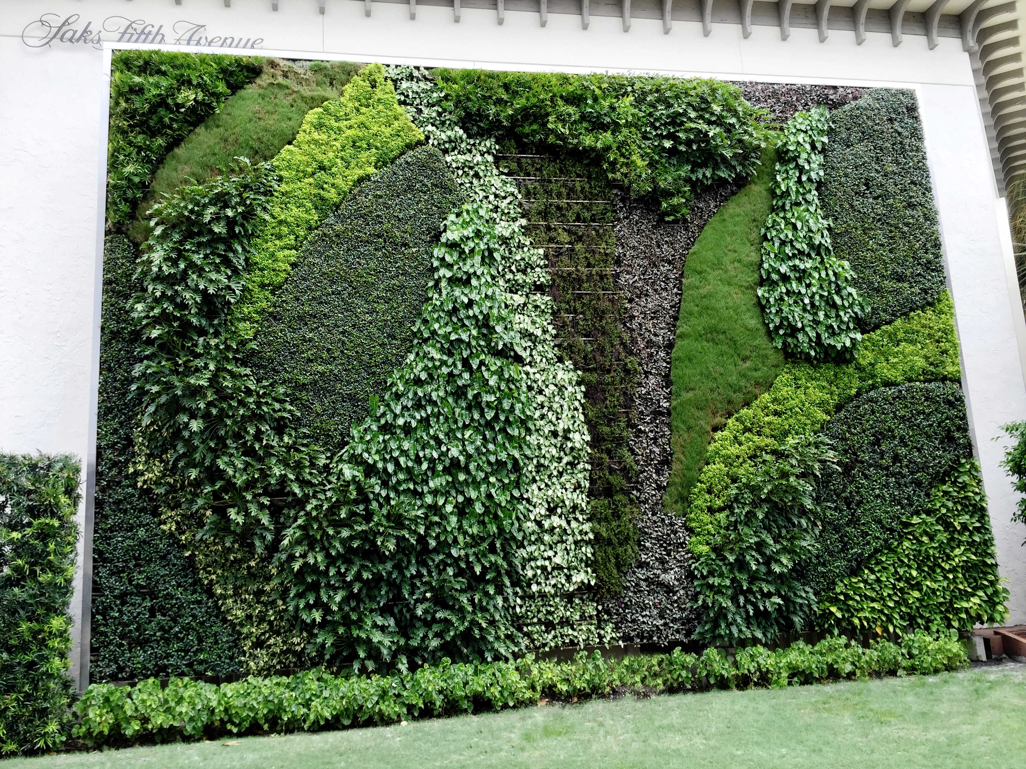 Green Wall - Saks Fifth Ave - Worth Ave - High end Retail Landscape Design