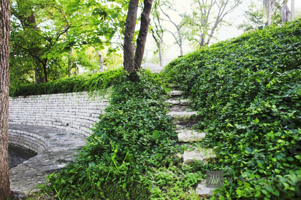 Steps with Asian Jasmine with