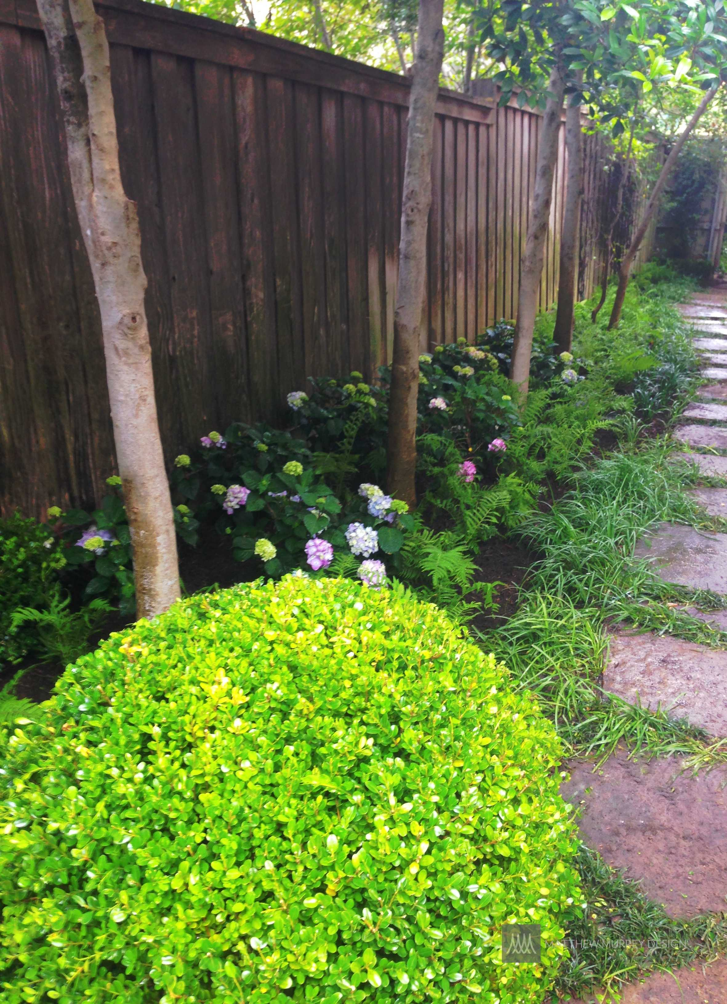Landscape Ideas: Best Solutions for Shade on plant landscaping design, plant nursery design, plant terrarium design, plant flower garden design, plant by number garden plans, plant pots design, plant with long curly leaves, plant privacy screen design, plant trees design,