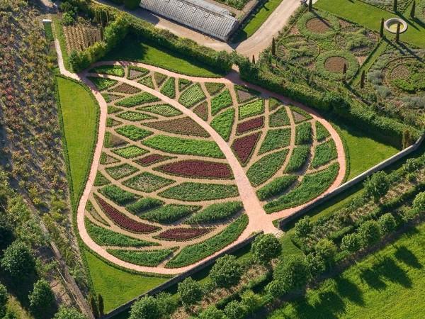 Leaf-shaped vegetable and fruit garden