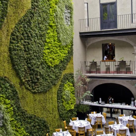 Sculptural Green Wall