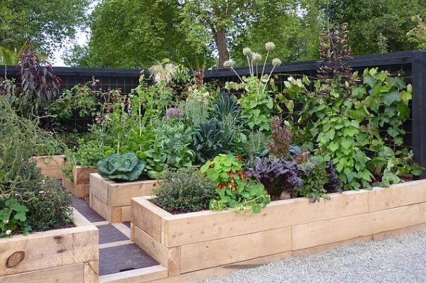 Naturalistic edible garden in NZ