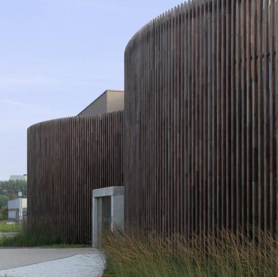 Sculptural Wood Screen