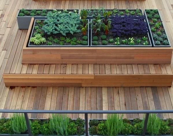 Harvest rooftop garden in Vancouver
