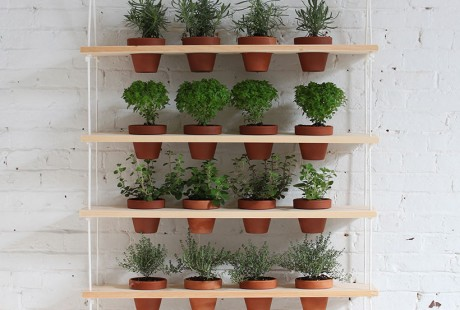Modern hanging herb garden