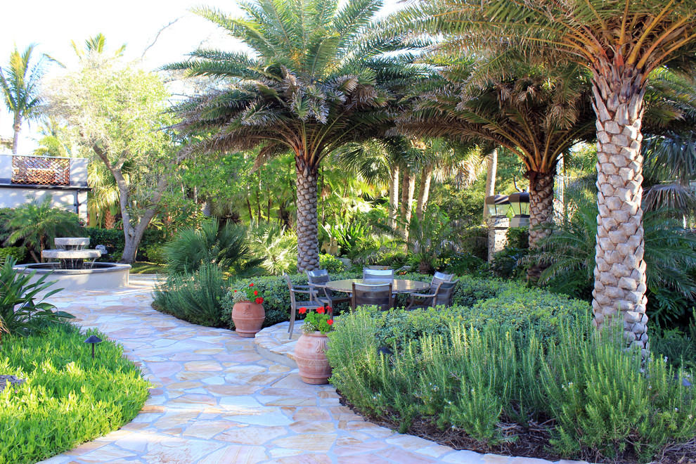 Plant Styles: Traditional vs Contemporary Plants on Palm Tree Backyard Ideas id=24839