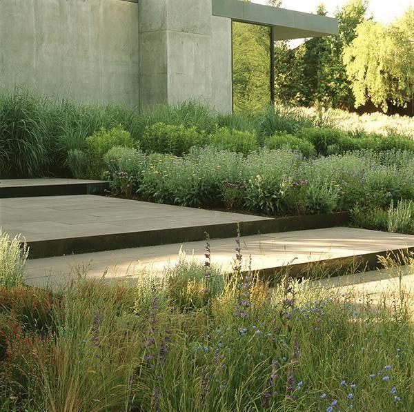 Sustainable / Naturalistic Garden Lutsko Associates