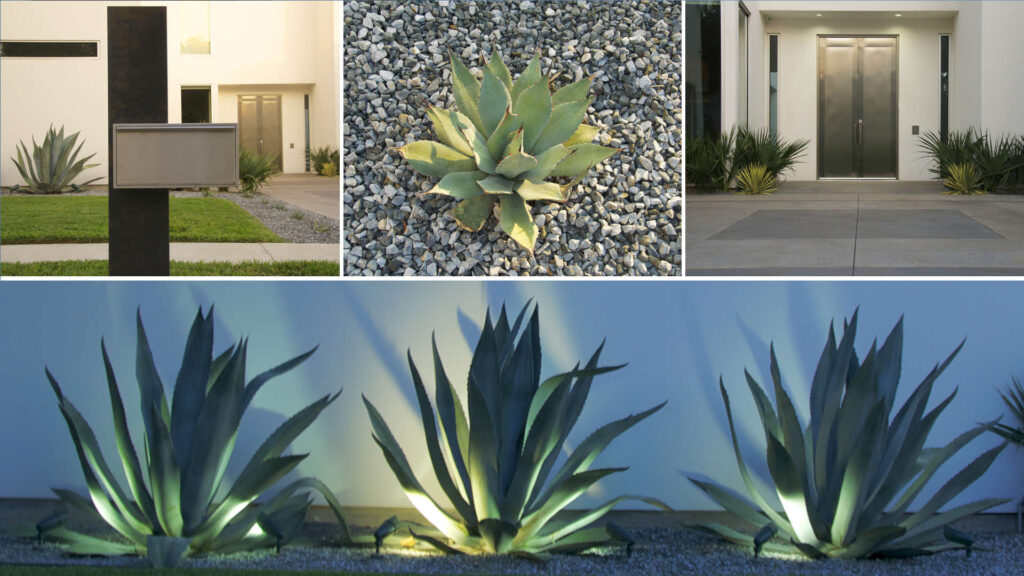 Water-wise Landscapes: Blend Style & Sustainability
