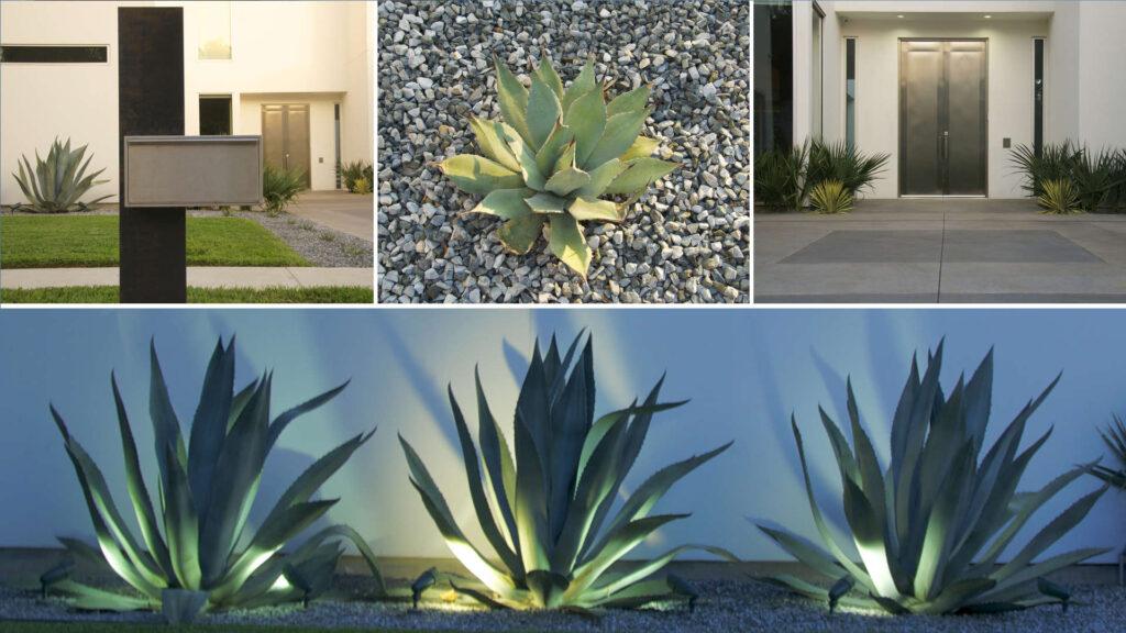 Landscape Design Blog Latest Matthew Murrey Design